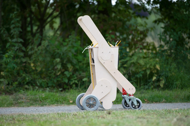 chariot pour chien handicape du train arriere - Série 2019